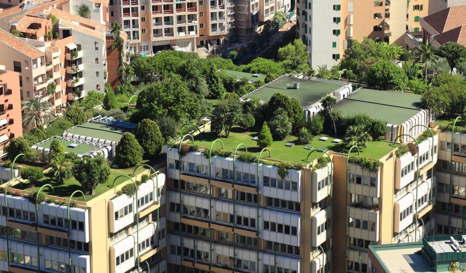 绿化屋顶提高生物多样性净收益