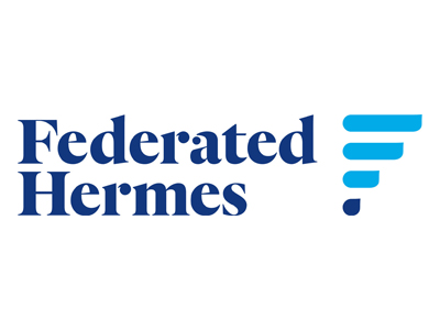 Hermes logo website