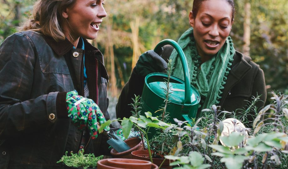 Community planting to reflect social value in development