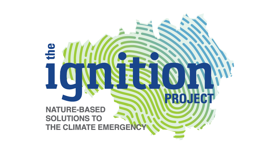 TheIgnitionProject_Logo DC