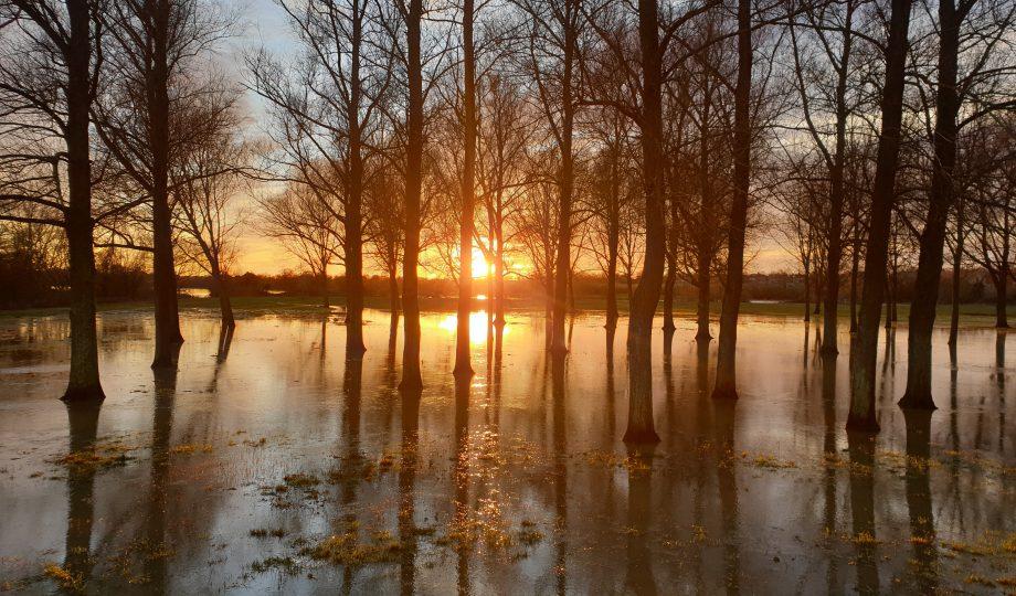 British flood.